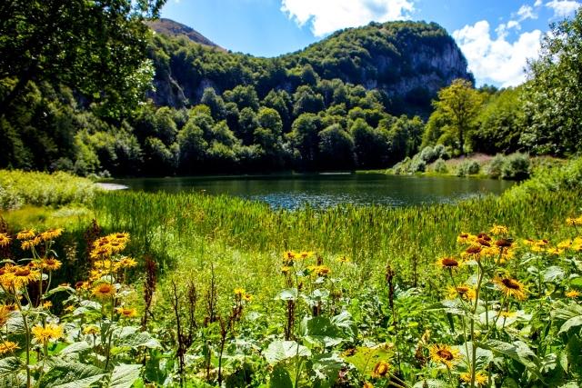 Jezero Donje Bare, Zelengora